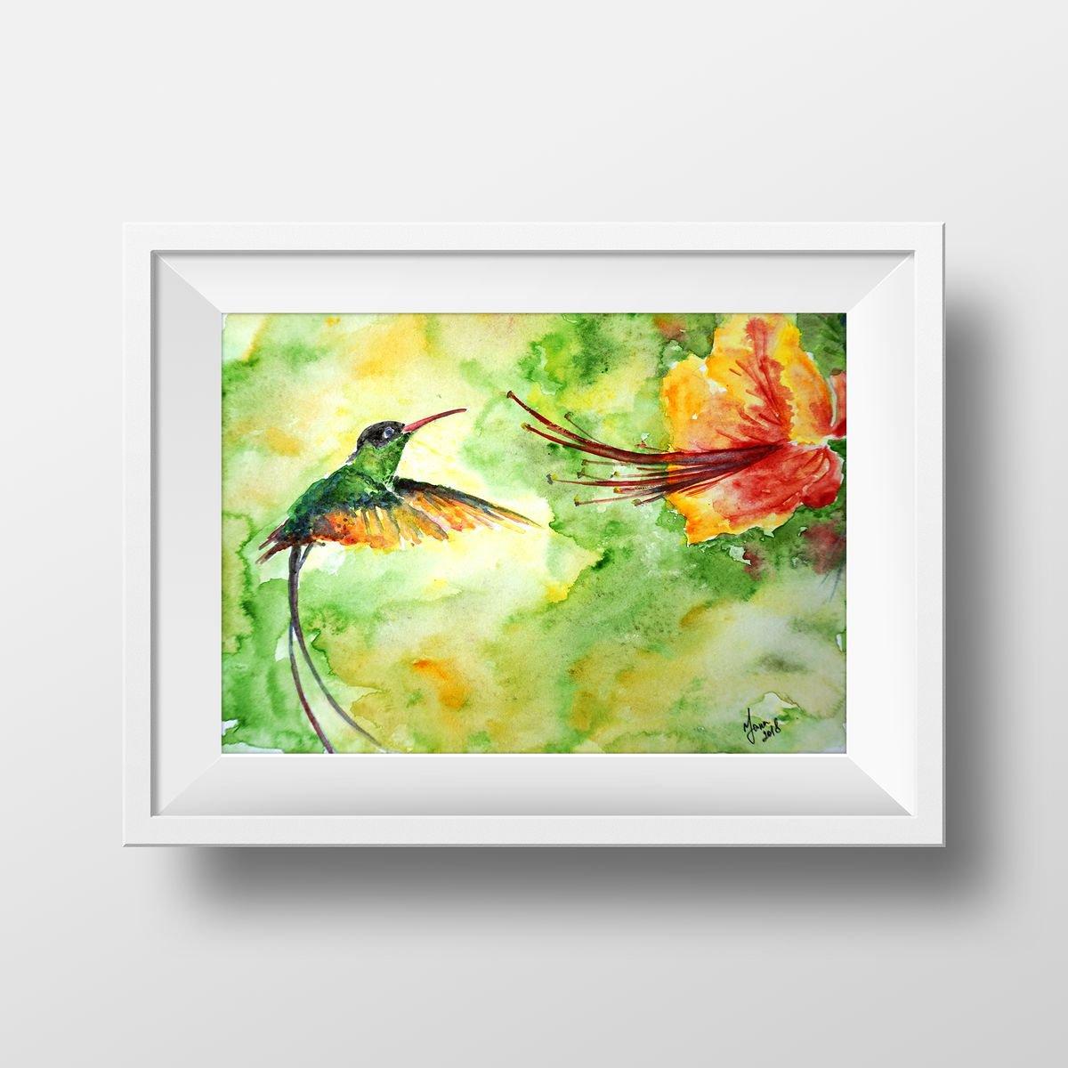 Watercolor Colibri Bird Original - Aquarelle Hum   Artfinder