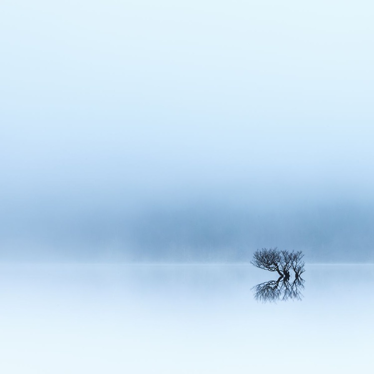 Lost in the mist..... - Image 0