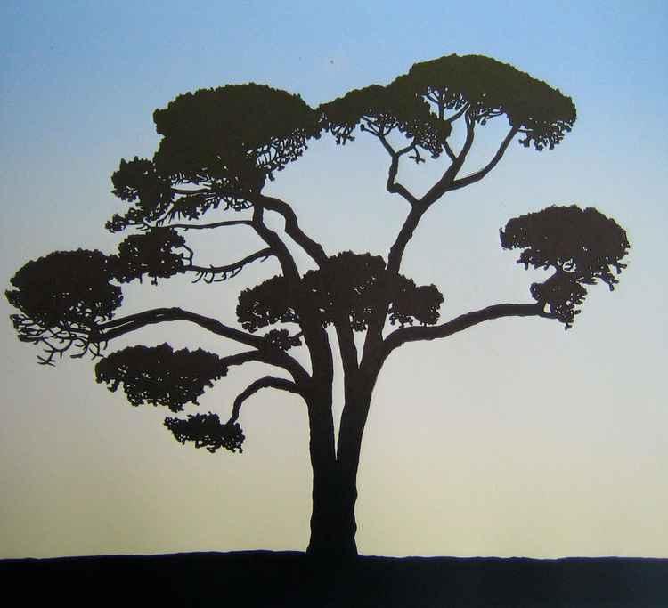 Majestic Pine
