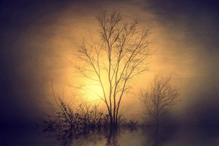 Tenderness of Dawn - Image 0