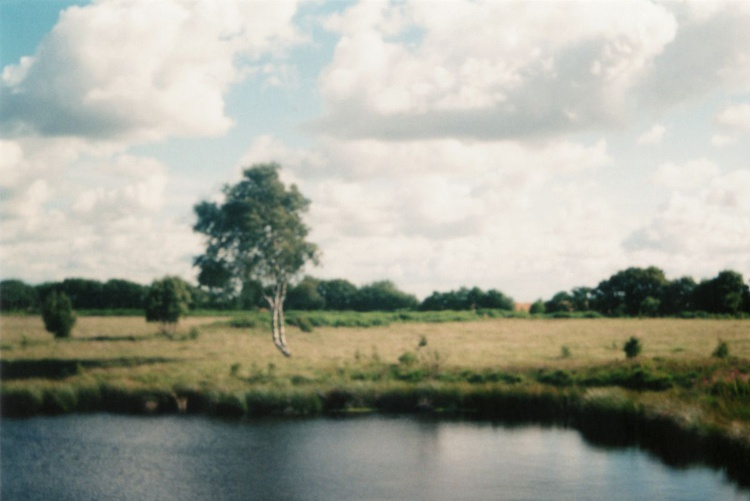 Across The Pond - 1/25 - Unmounted (24x16in) - Image 0