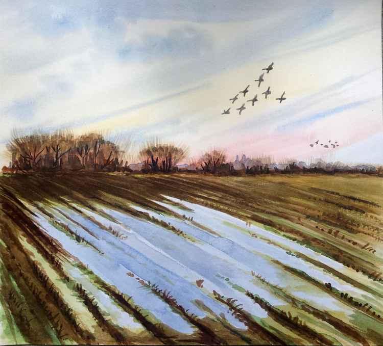 field in autumn -