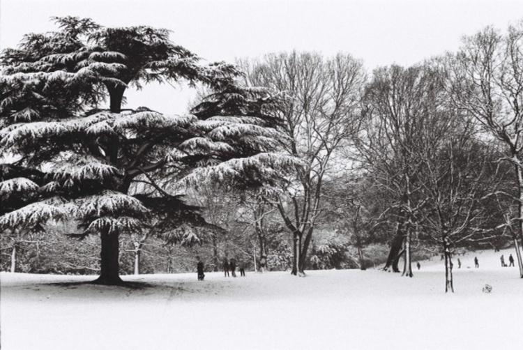Snow Day - Image 0