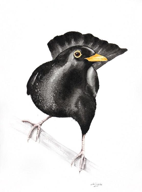 BLACKBIRD (Turdus merula)  bird, birds, animals, wildlife watercolour painting - Image 0
