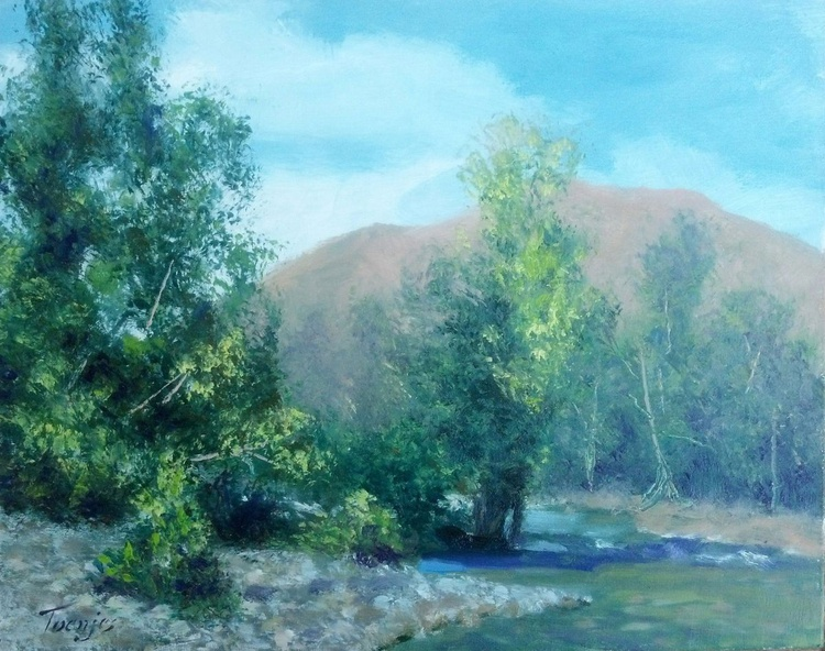 Down Twisp River - Image 0