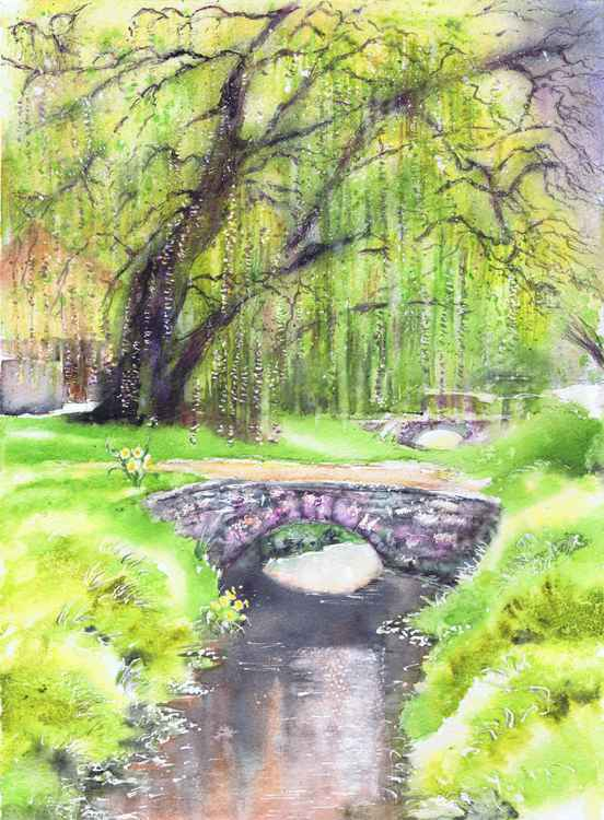 Willow By the Brook -