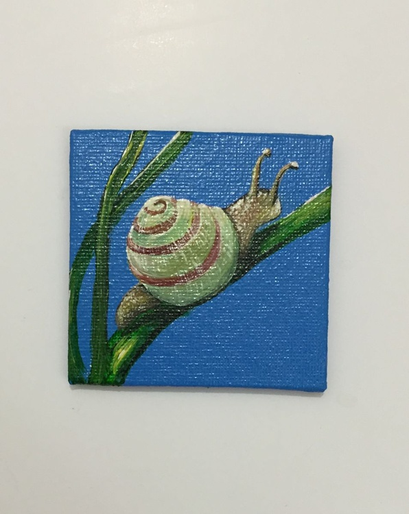 Wee Beasties - Snail 1 - Image 0