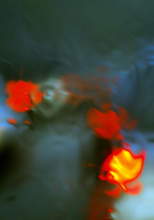In the Rain - Image 0