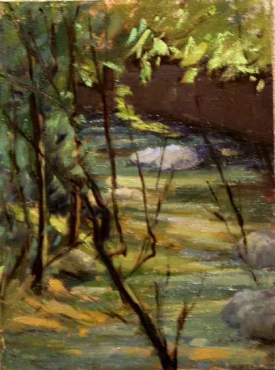 Hidden Waters -