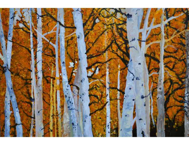 The Birches -