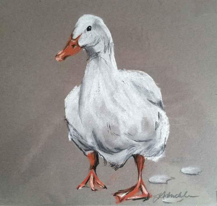 Happy Duck -
