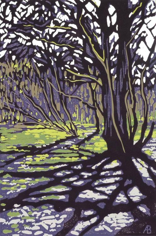 Tree Casts Shadow - Image 0