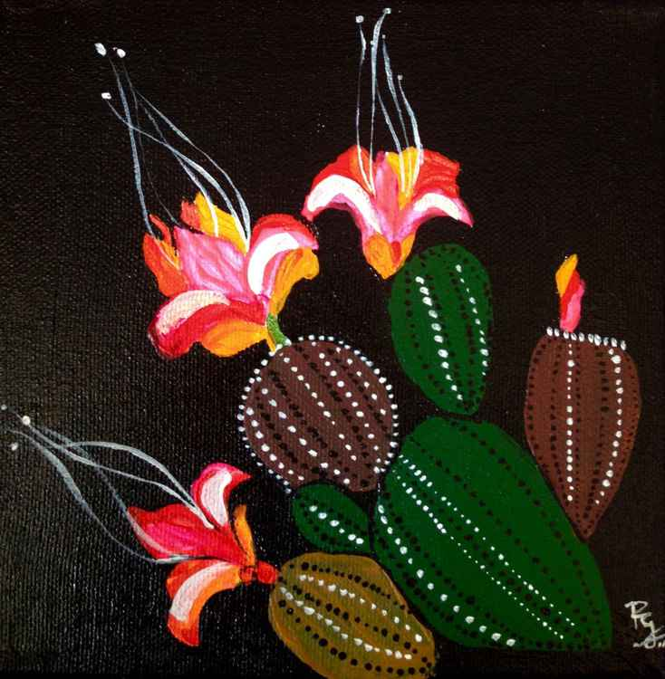 Cactus blooms at Night (3) -