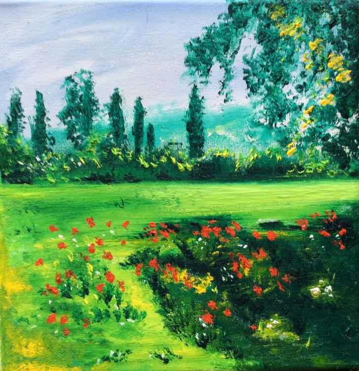 Poppies  of Riva -
