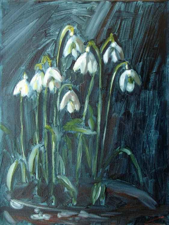 Snowdrops -