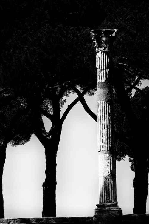 the roman heritage -