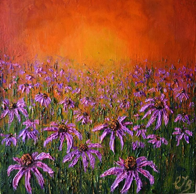 Echinacea sunset - Image 0