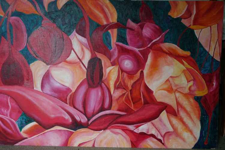Fuchsia -