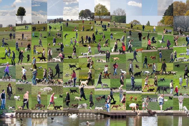Hampstead Heath - Image 0