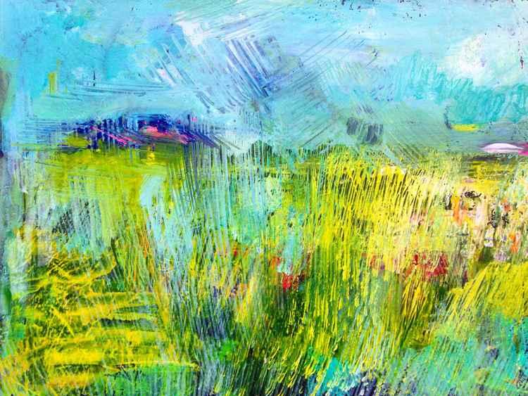 Field -