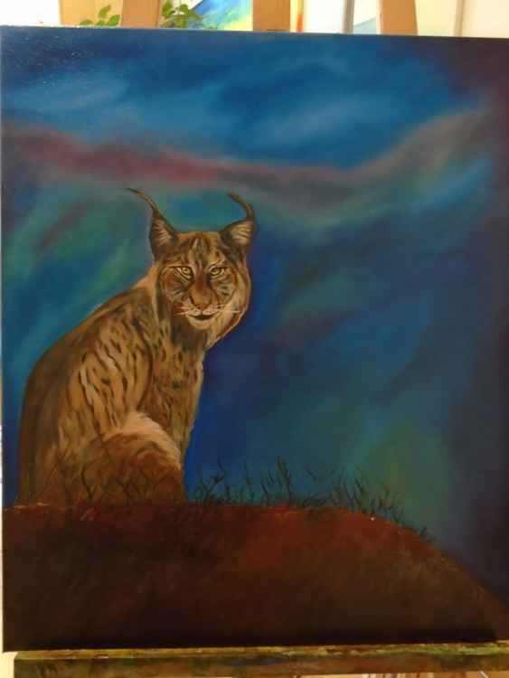 Lynx -