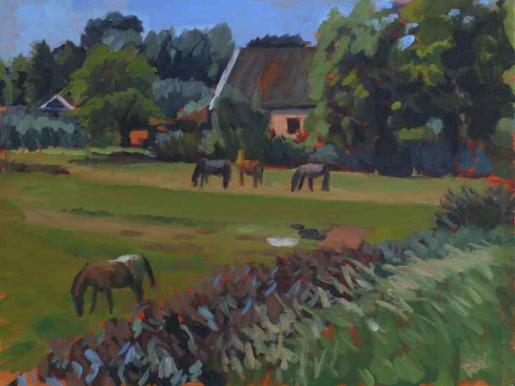 Horses in August -