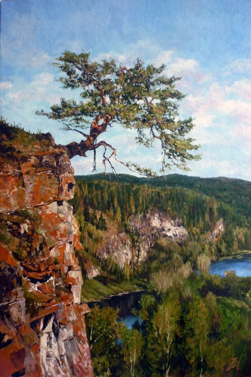 Pine Tree on a Cliff - Summer - Image 0