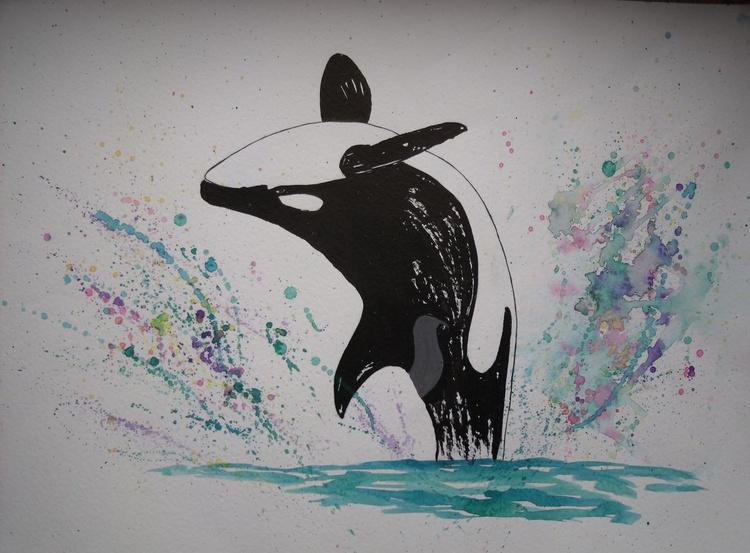 Orca Breaching - Image 0