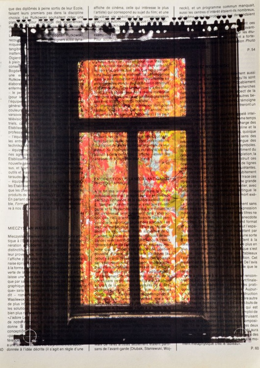 Autumn Behind The Window On Vintage Paper - Image 0