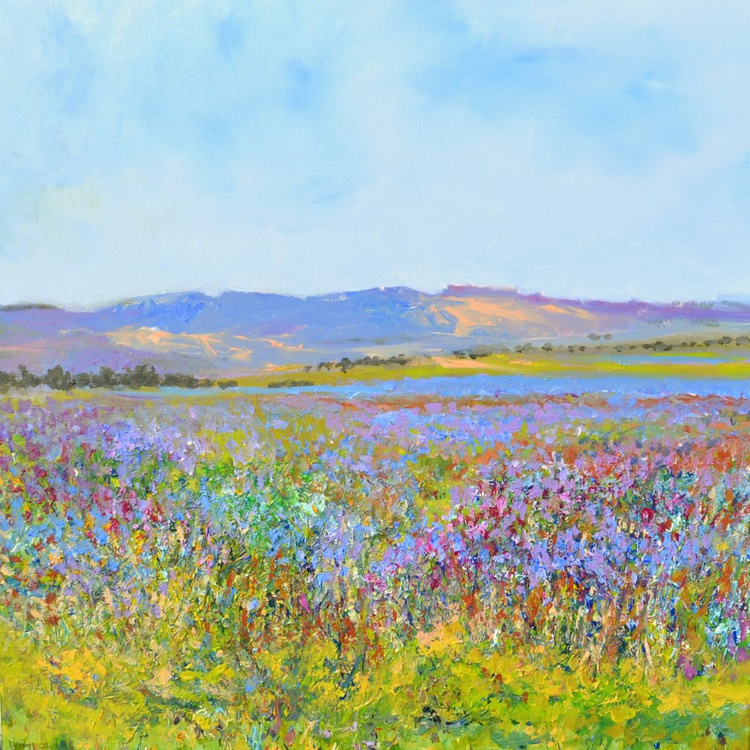 Lavenderfields in the Provence 2015 - Image 0
