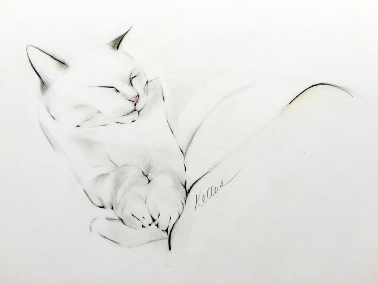 Cat Nap - Image 0