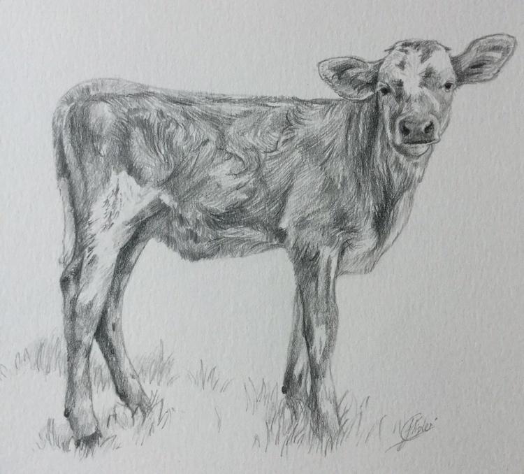 Calf - Image 0