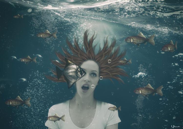 Aqua Vision - Limited Edition of 10 - Image 0
