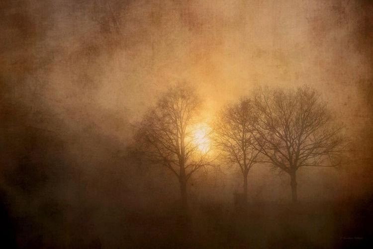 Burning Fog - Canvas 75 x 50 cm - Image 0