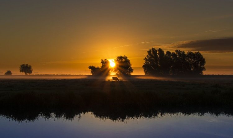 Dawn over the water meadows, Ely, Cambridgeshire - Image 0