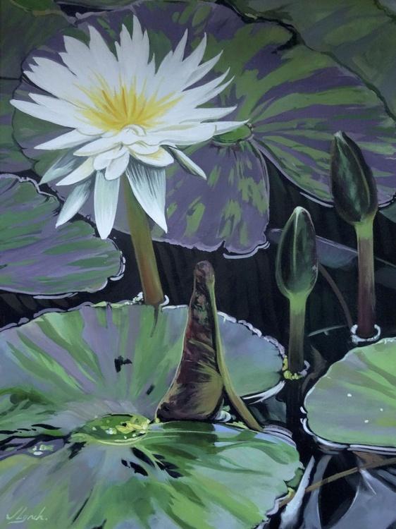 Among The Lily Pads - Image 0