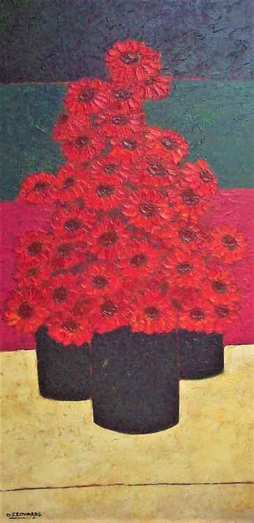 Pots of Red Barbertons -