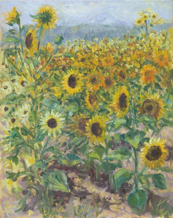 Sunflower Fields/Mt. Hood - Image 0