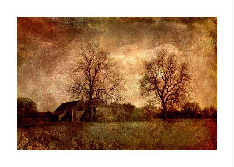 Old Barn and trees -