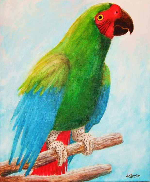 Polly Parrot -