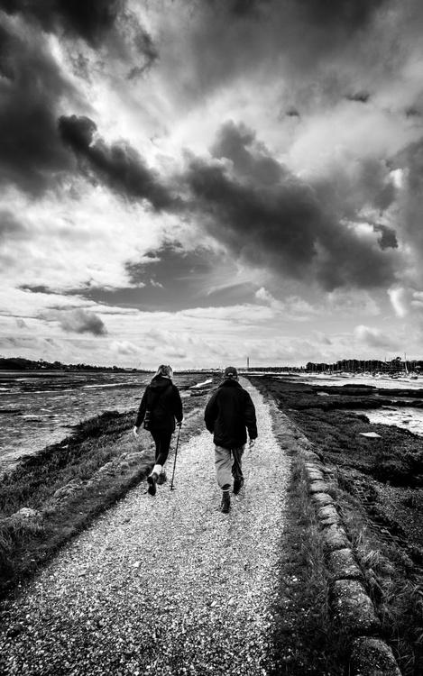 A Walk Along the River Hamble - Image 0
