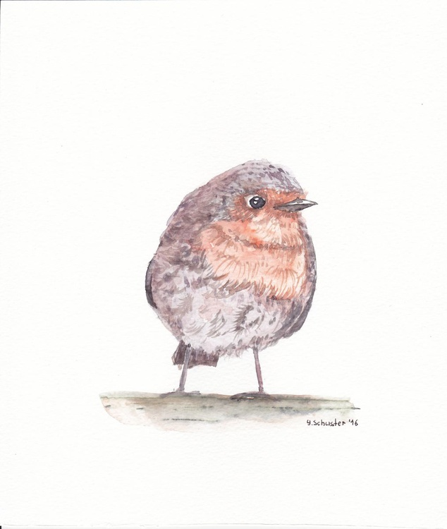 Watercolour birds  portraits series. Robin Birds. Michael - Image 0