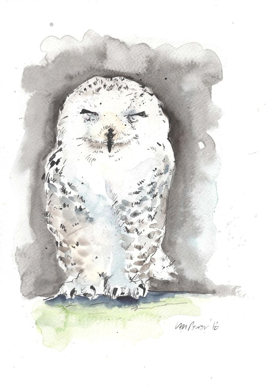 Snowy Owl - watercolour and ink - Image 0