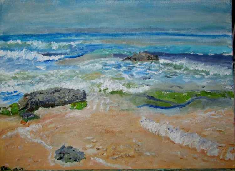 Netzanim Beach    ניצנים חוף הים -