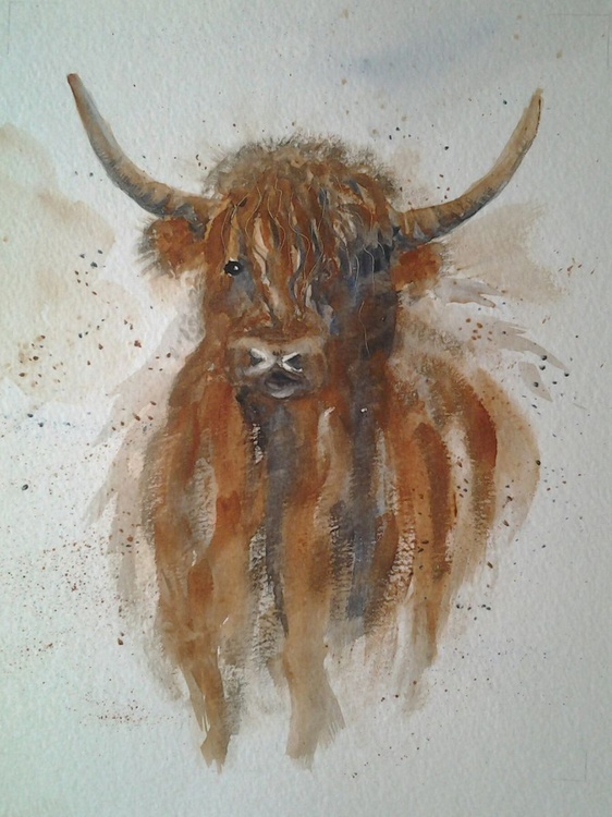 """HIGHLANDER"", watercolour of a cute cow - Image 0"