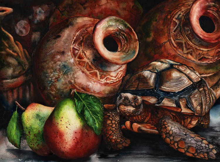 The Pear and the Tortoise - Image 0