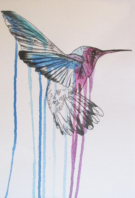 Busy Hummingbird - Image 0