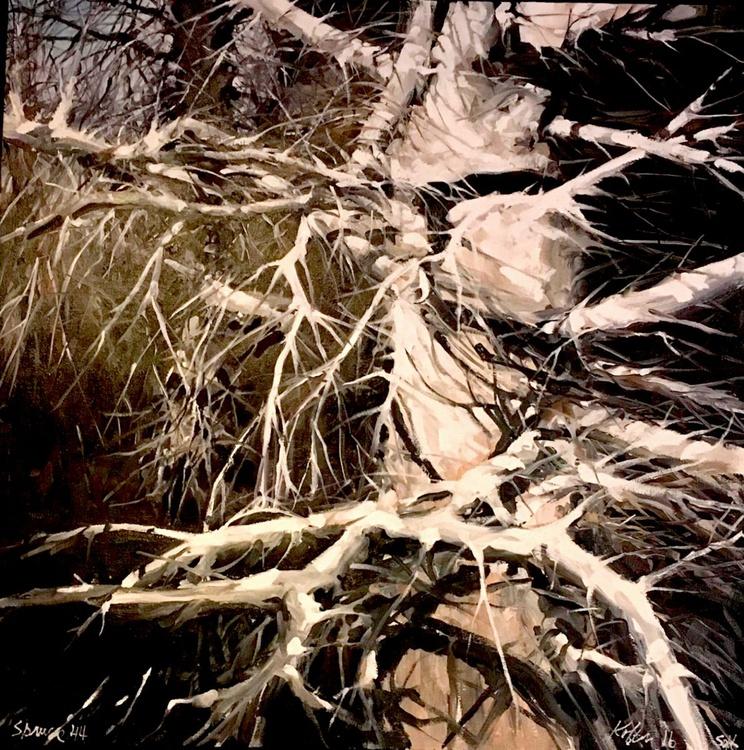 Spruce 44 - Image 0