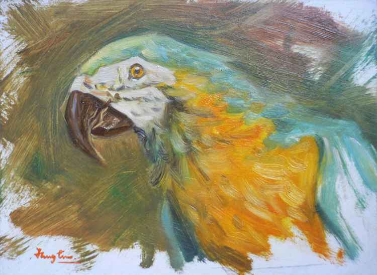 Original Oil paintingl animal art  PARROT on board   #16-4-18-01 -