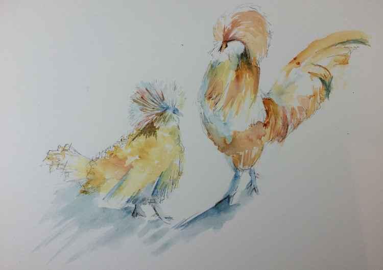 Bowie chicks -